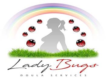 ladybug-min